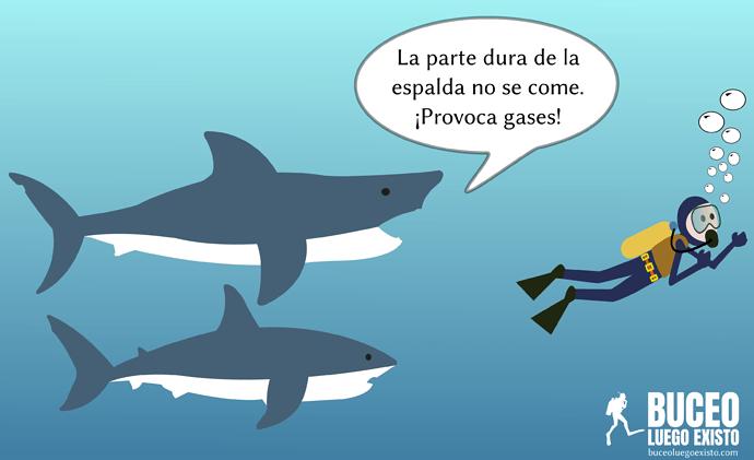 chiste_tiburones_buzo_gases