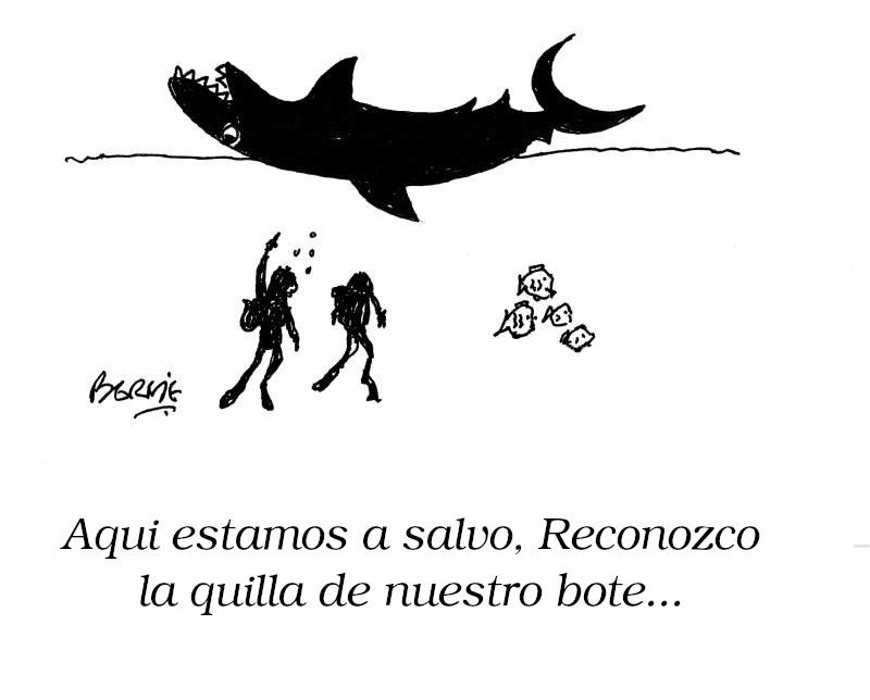 animals-dive-diving-deep_sea_diving-divers-scuba_divers-shu0243_low