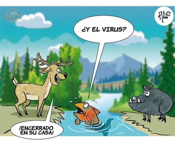 y_el_virus
